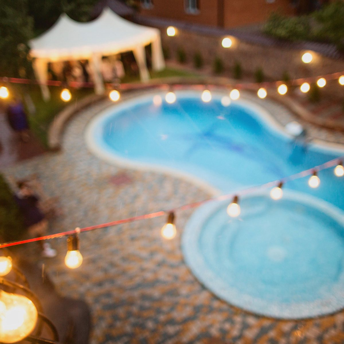 pool with outdoor string lights