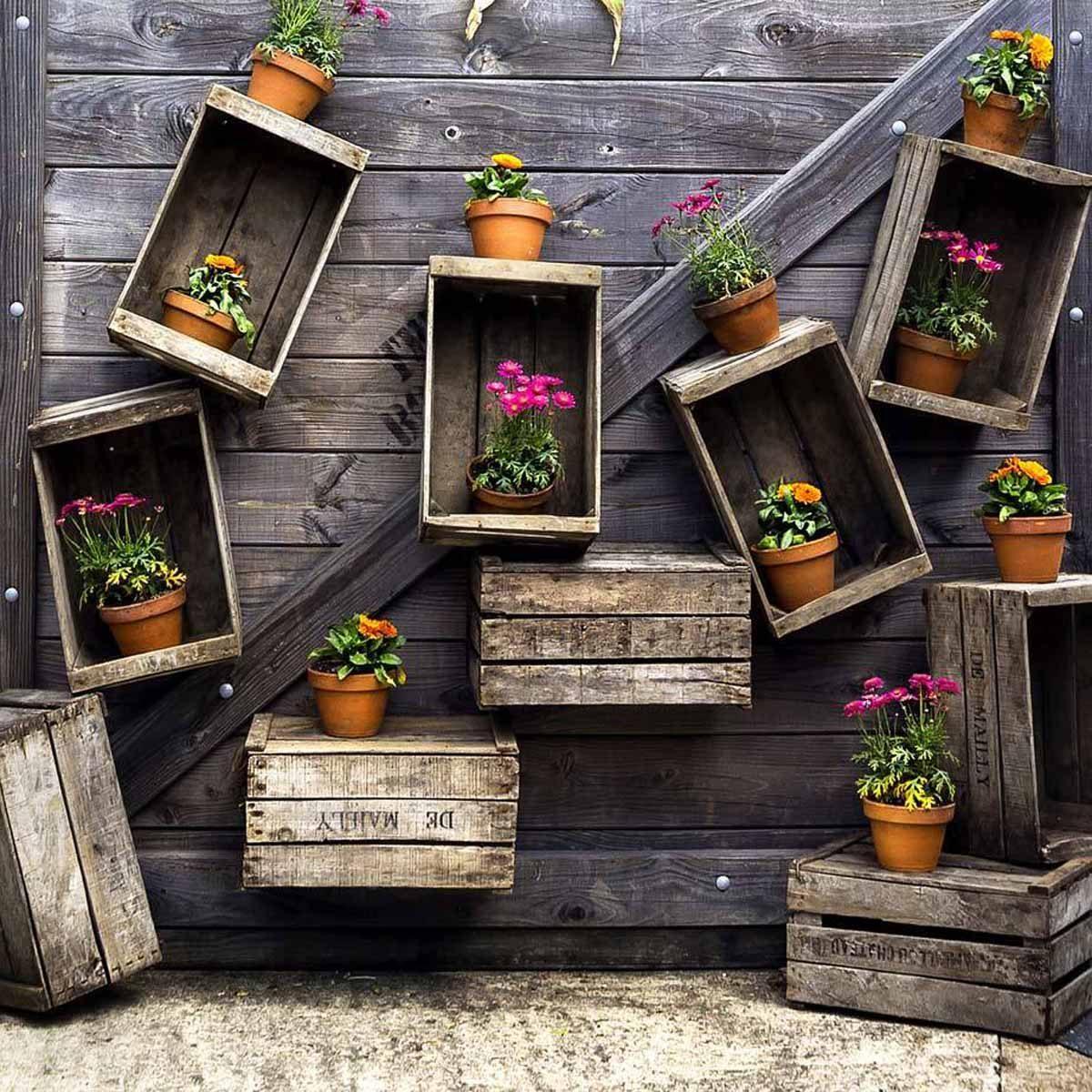 Добавьте новую жизнь в свой сарай с экзотическими растениями