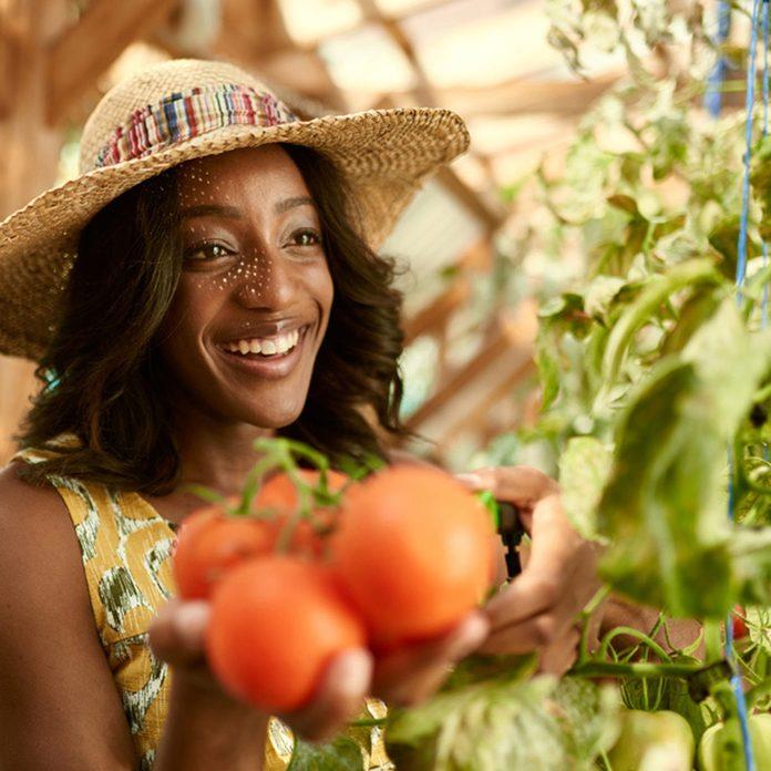woman with tomatoes in green house