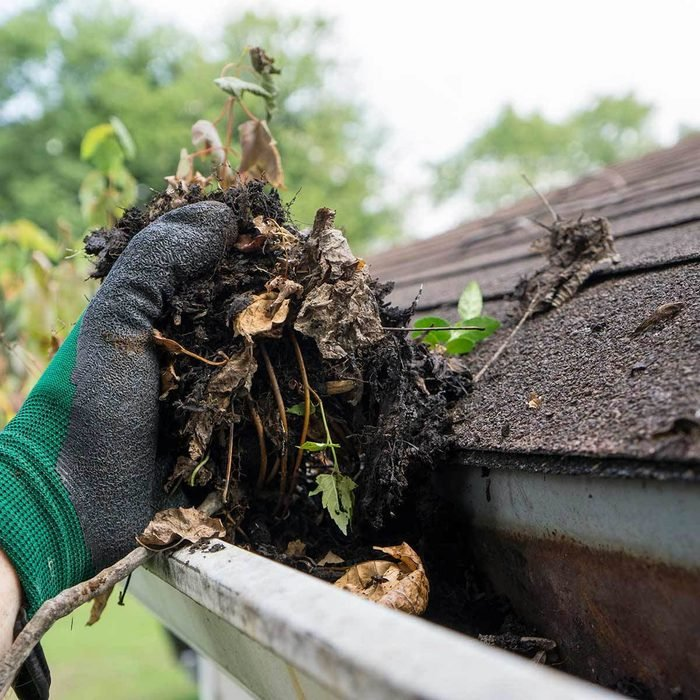 Clean Out Your Gutters