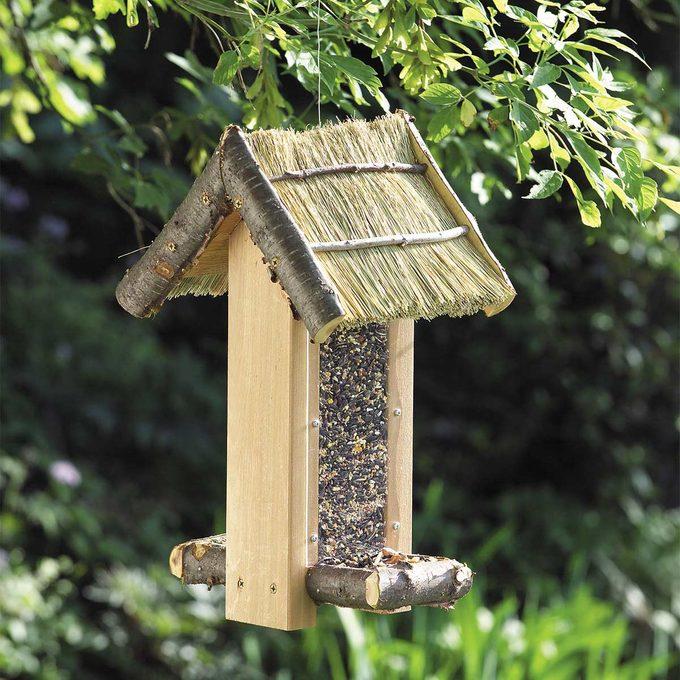 bird feeder install on tree