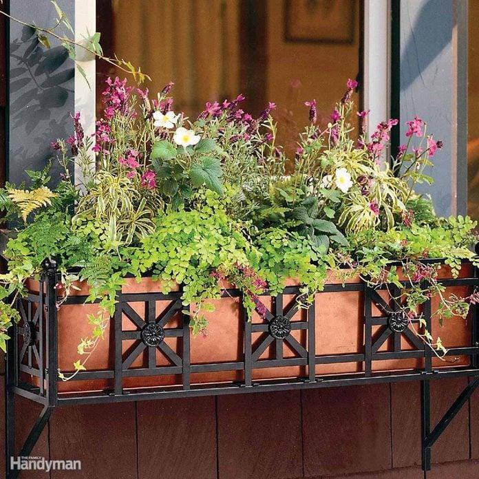 Flower box, planter