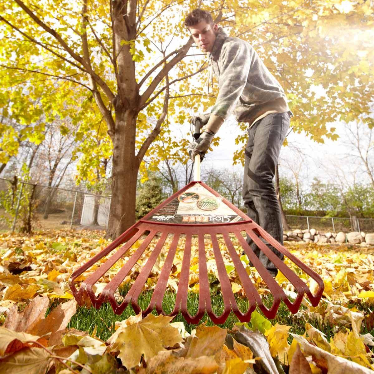 FH12OCT_532_58_039 rake raking fall leaves