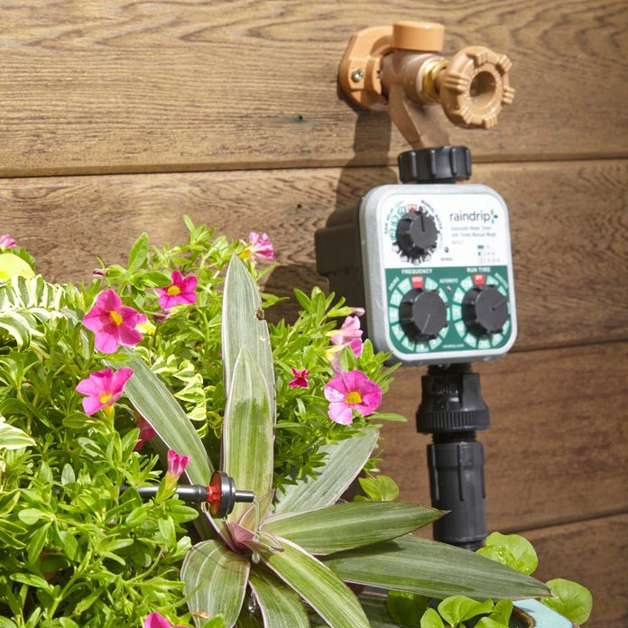 Winterize Irrigation Systems