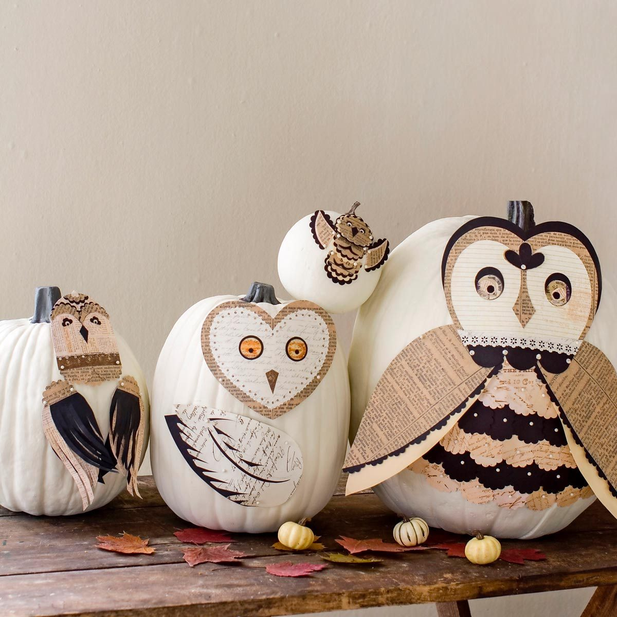 owl pumpkins with newspaper