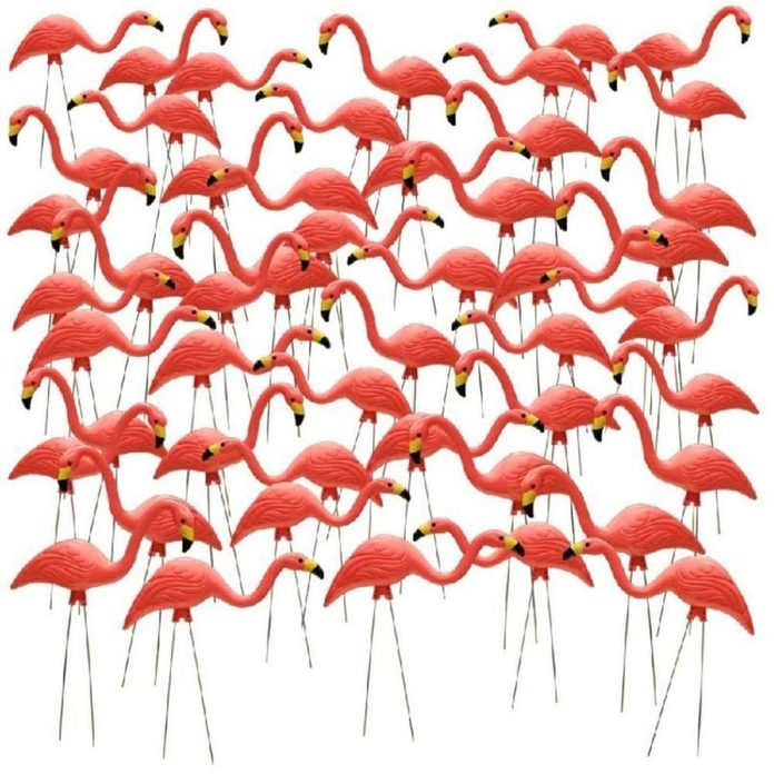 A 50 Pack of Pink Flamingos