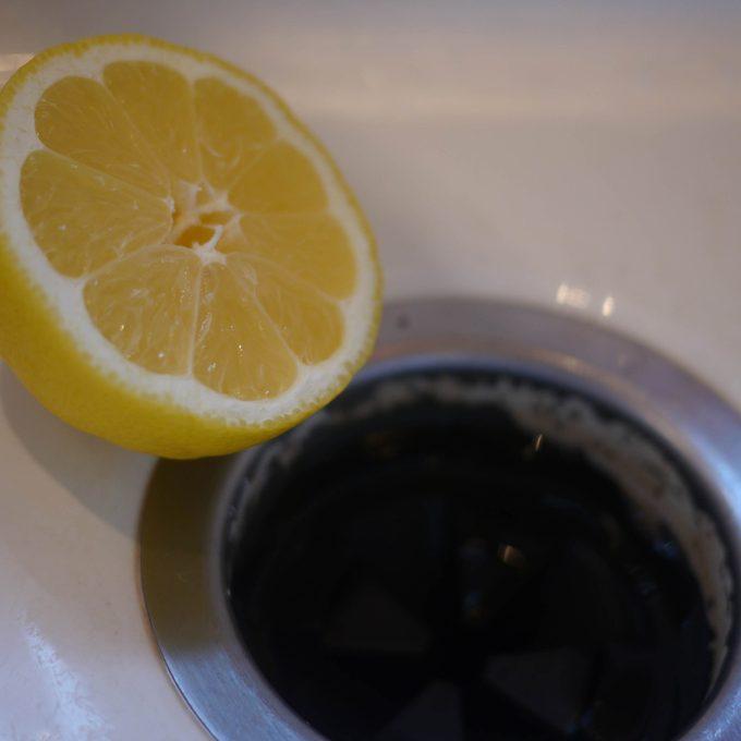 lemon garbage disposal