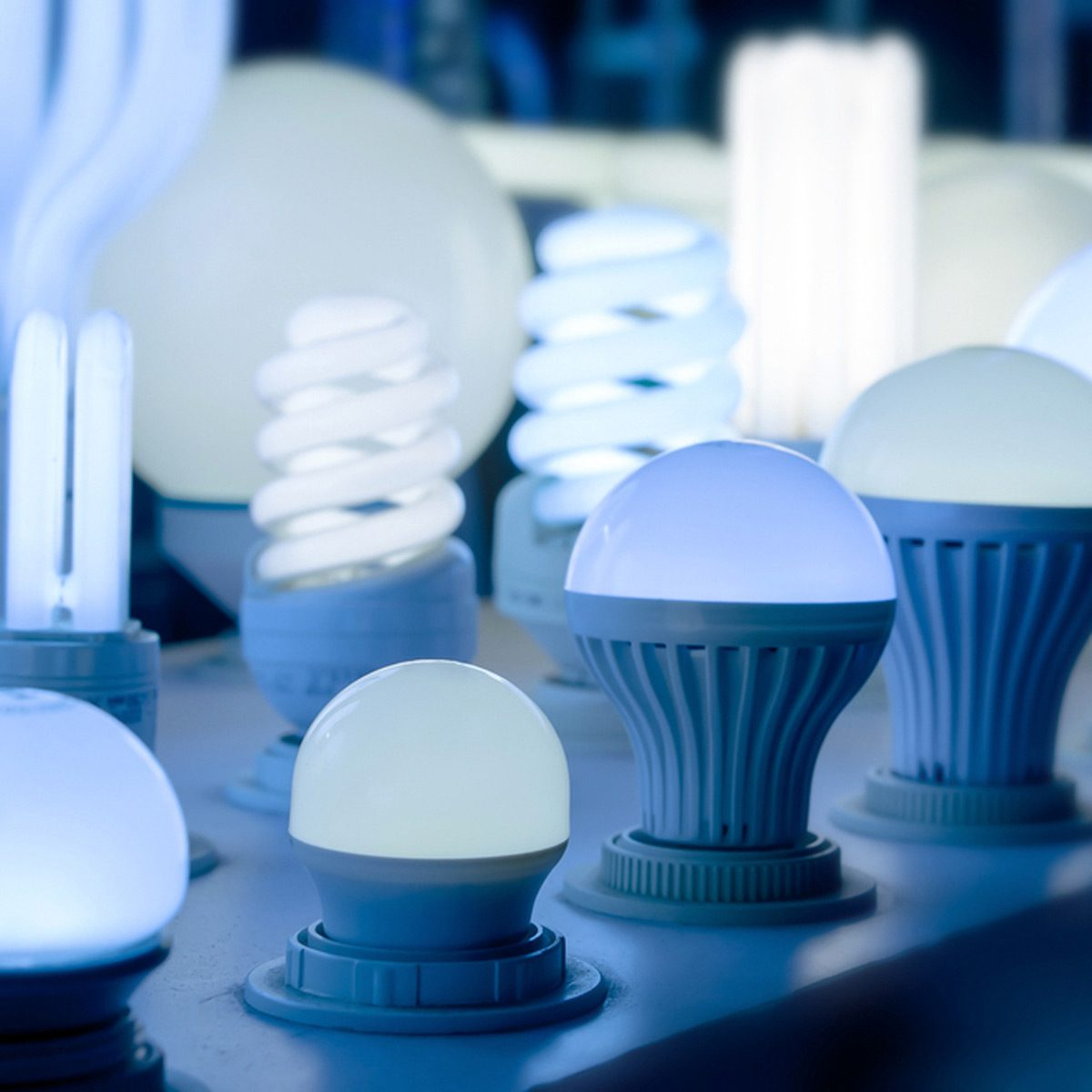 Tips For Choosing Led Light Bulbs Your Home The Family