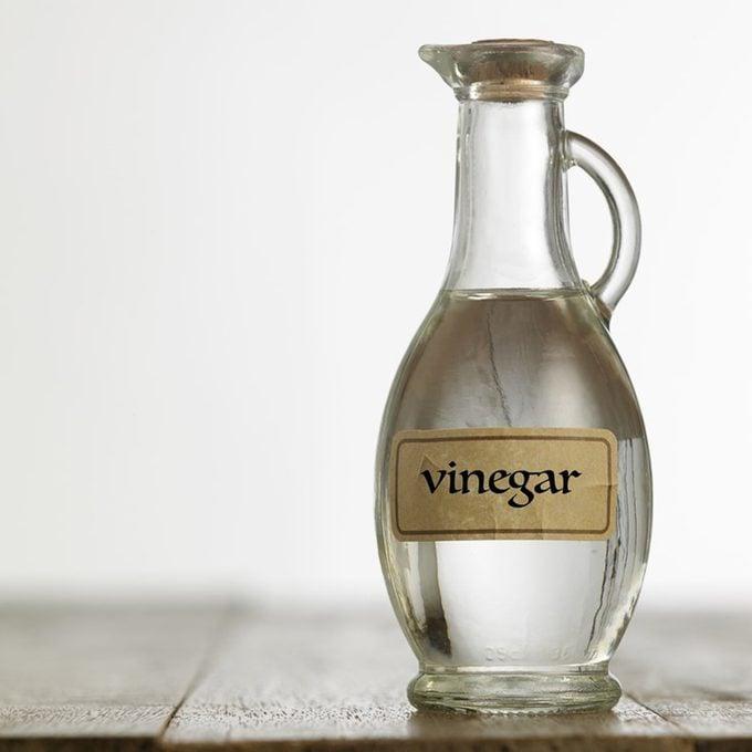white vinegar for pest control