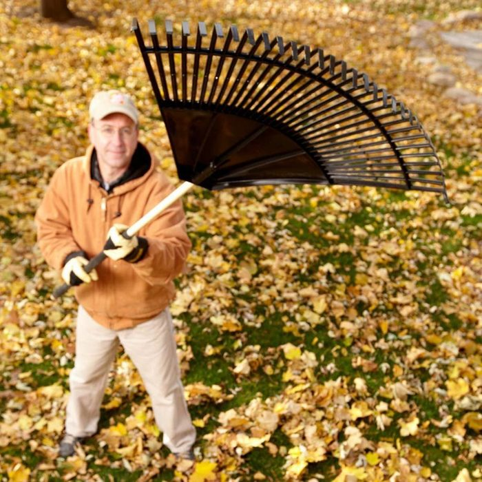 Leaf-Friendly Fan Rake