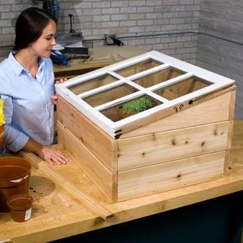 mini greenhouse with old window