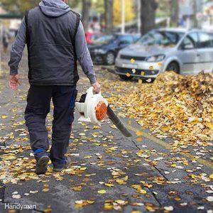 leaf-blower-web fall tool leaves