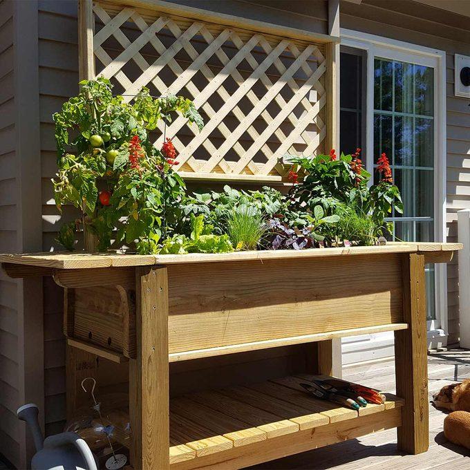 reader patio planter
