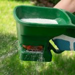 14 Quick and Simple Yard Maintenance Things to Do in October