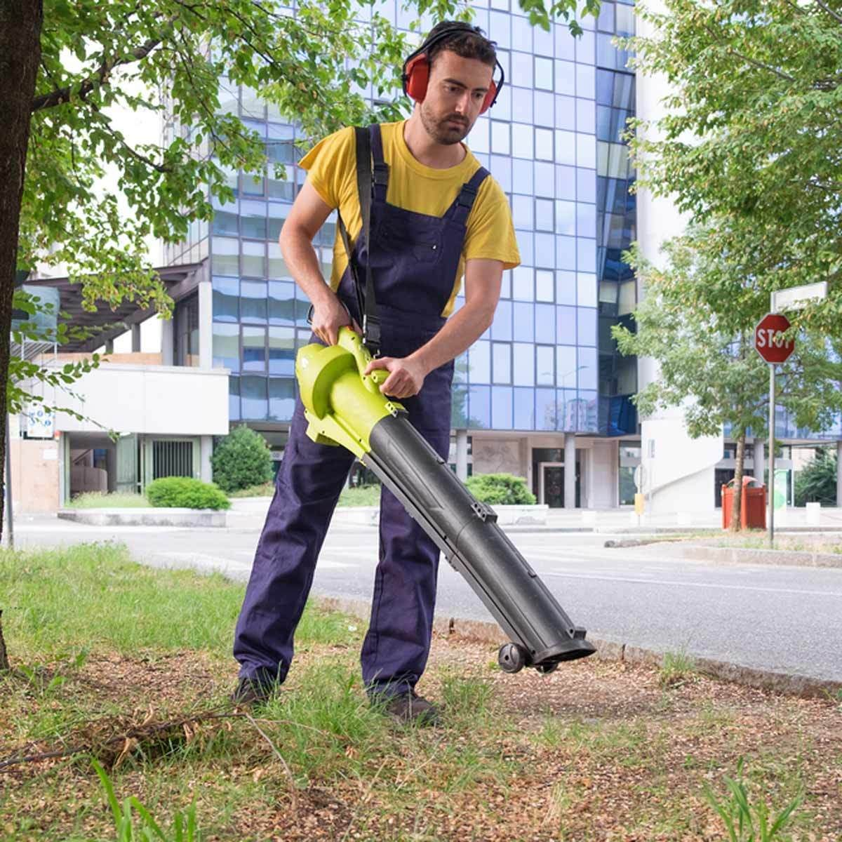 Fall Tool Leaf Vacuum