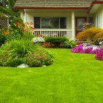 11 Front Yard Landscaping Ideas We Love