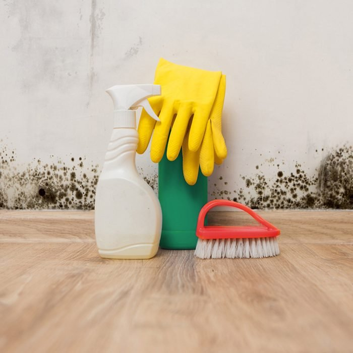 Clean Up Mold and Mildew Buildups