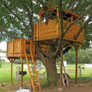 Reader Project: Oversize Tree House