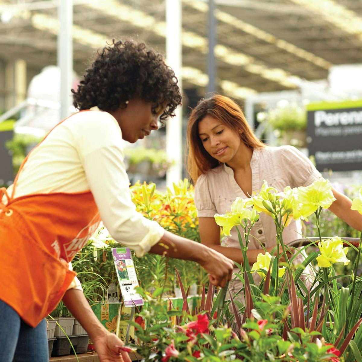 Try the Garden Center Checkout