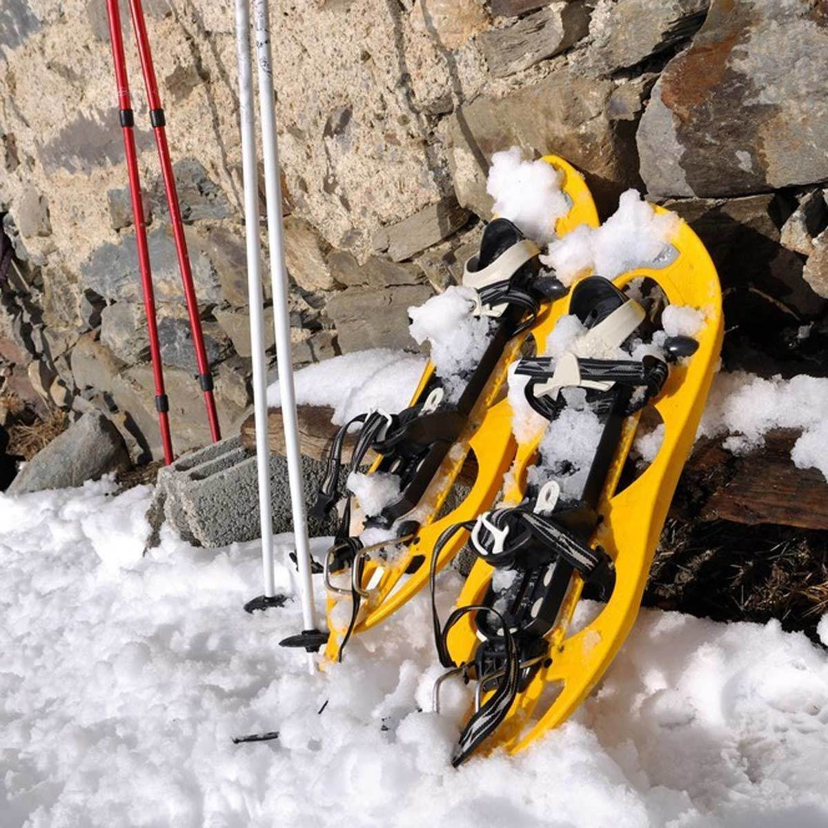 15 Tips For Storing Your Winter Sports Gear The Family