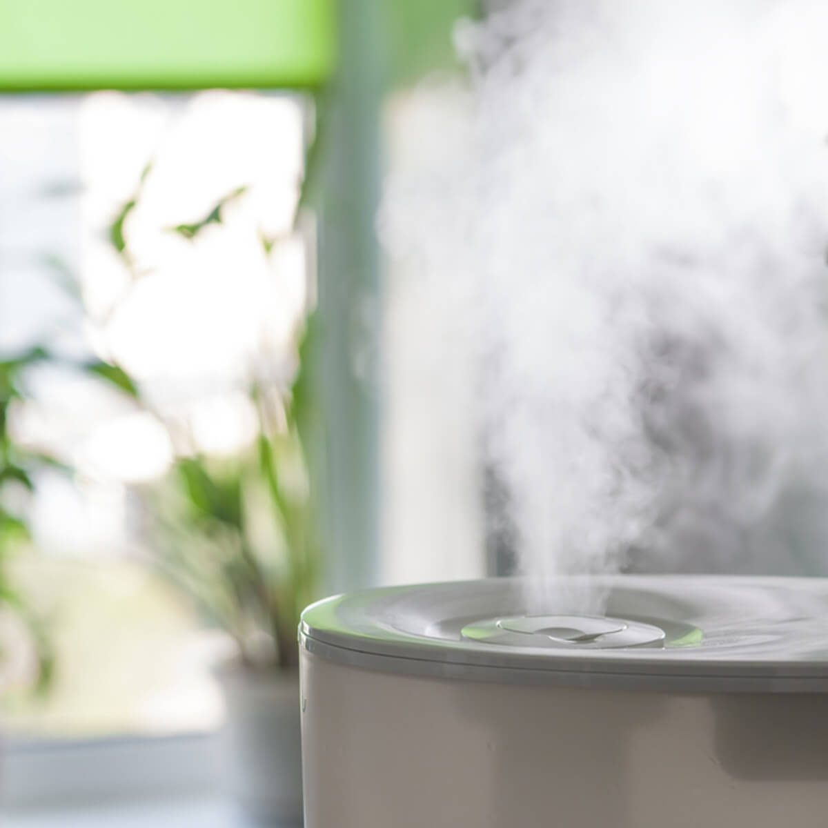 Prep the Humidifier