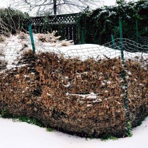 Winter Composting 101