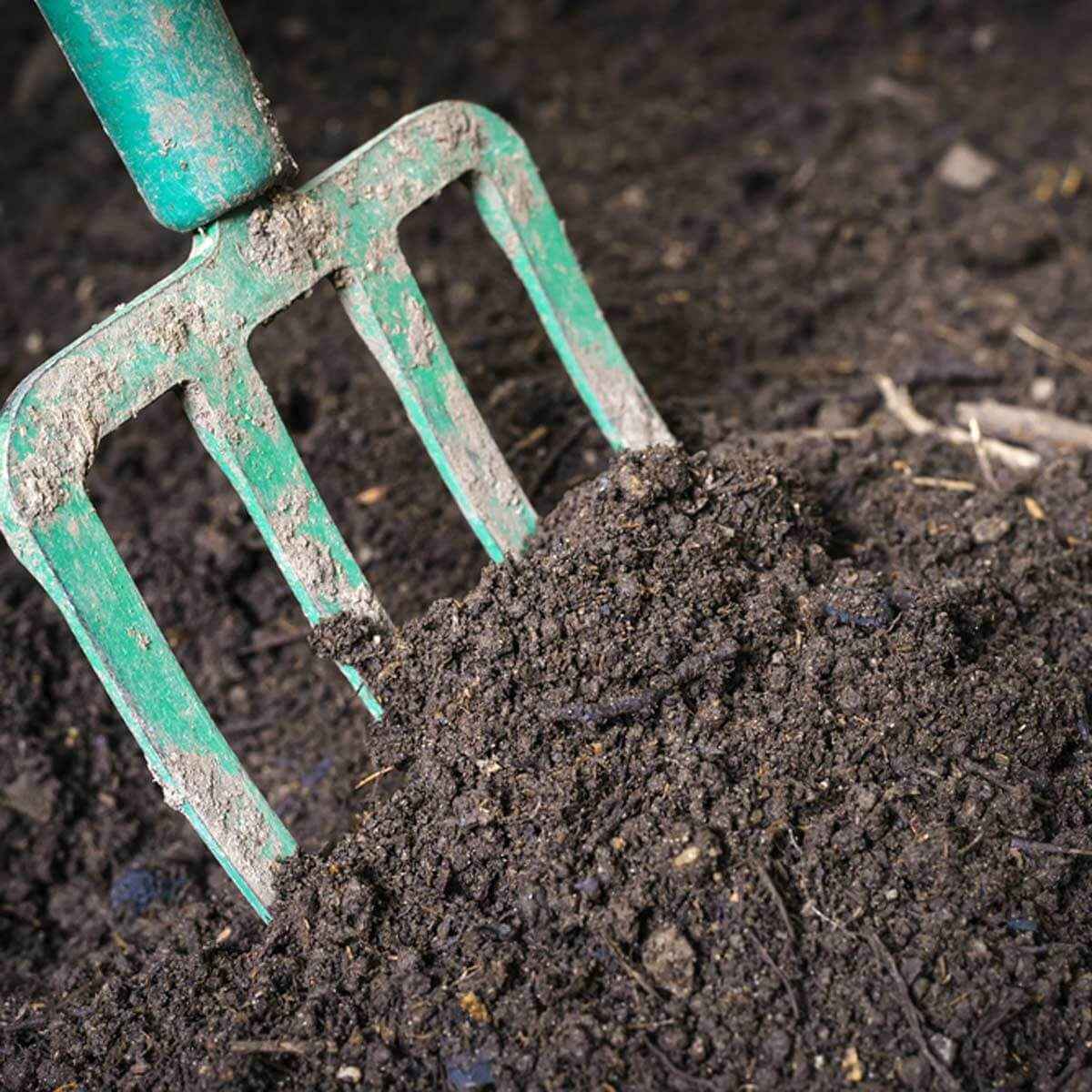 How to Improve Your Garden Soil On the Cheap