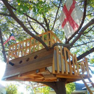 Reader Project: Pirate Ship Tree House