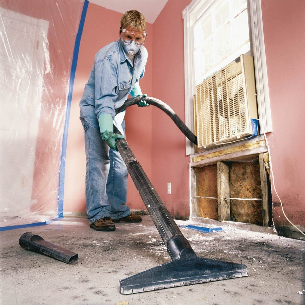 Mold Removal and Remediation Expert