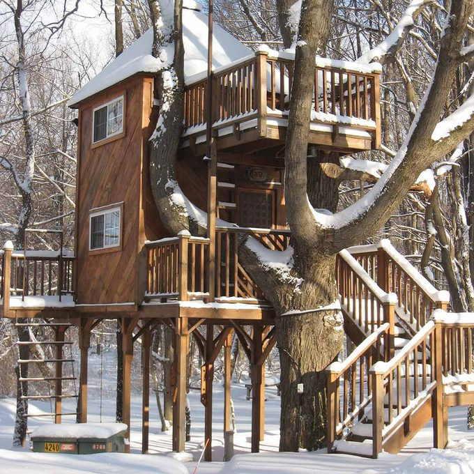 year-round tree house