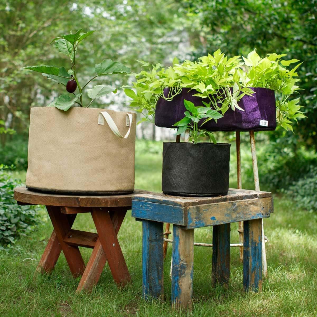 Grow Healthier Plants in Handy Fabric Pots