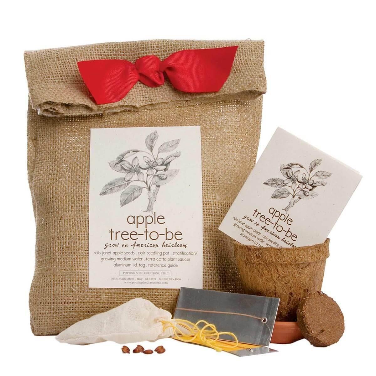apple tree planting kit gift _05