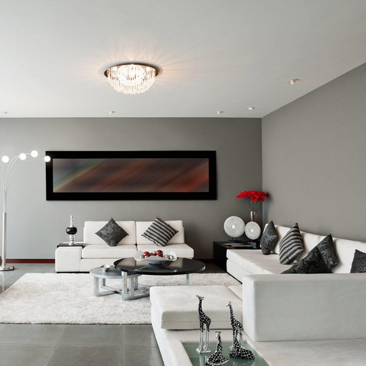 Living Room Wall Color Ideas: Crisp Gray