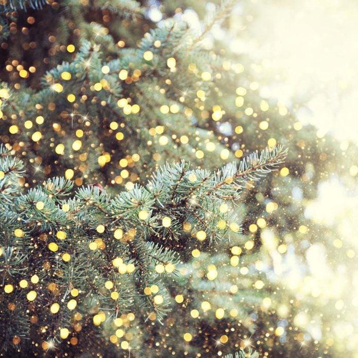 decoratingtips_503573392_09 christmas tree
