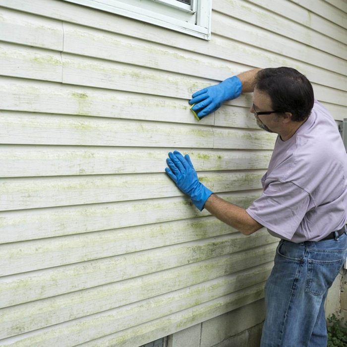 Inspect and Replace External Siding