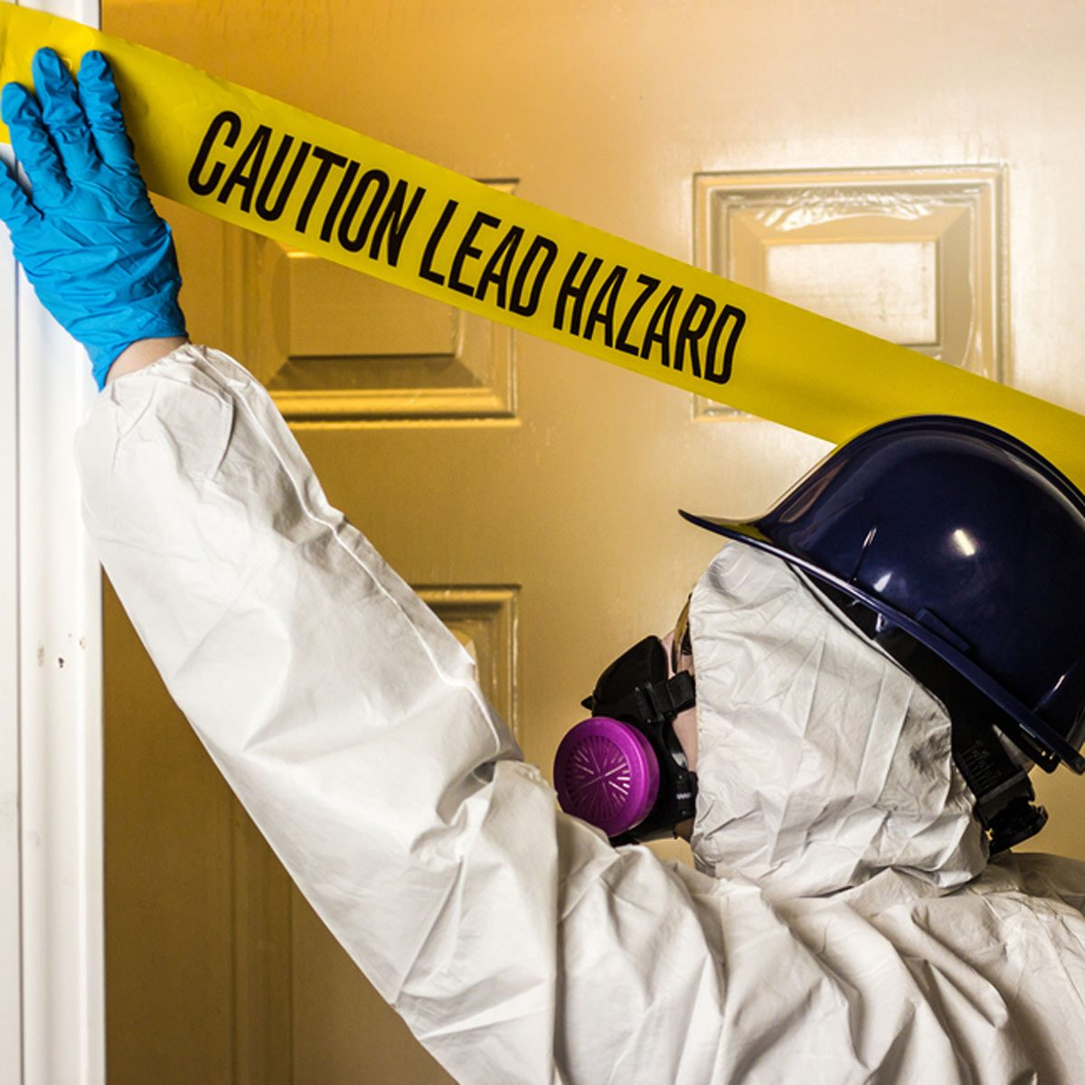 Mold, Asbestos and Lead Removal