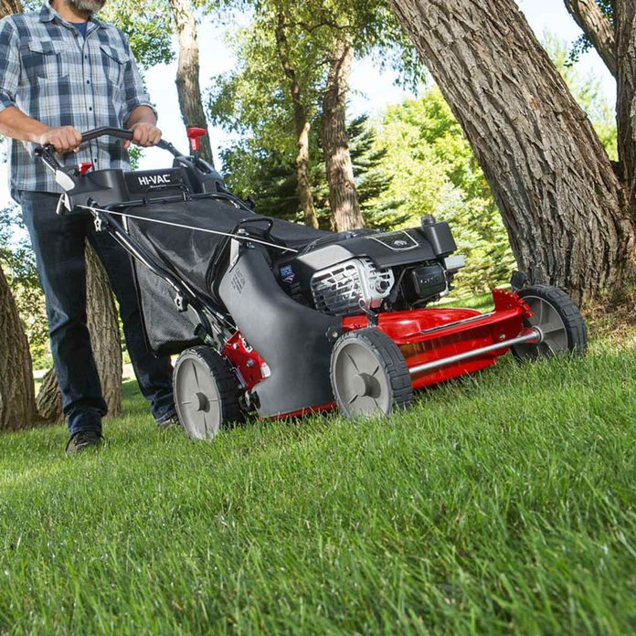 """Myth: """"If I cut the grass short, I won't have to mow as often"""""""
