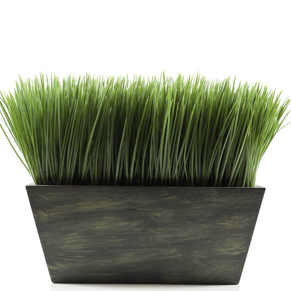 grass planter box _98646533_10