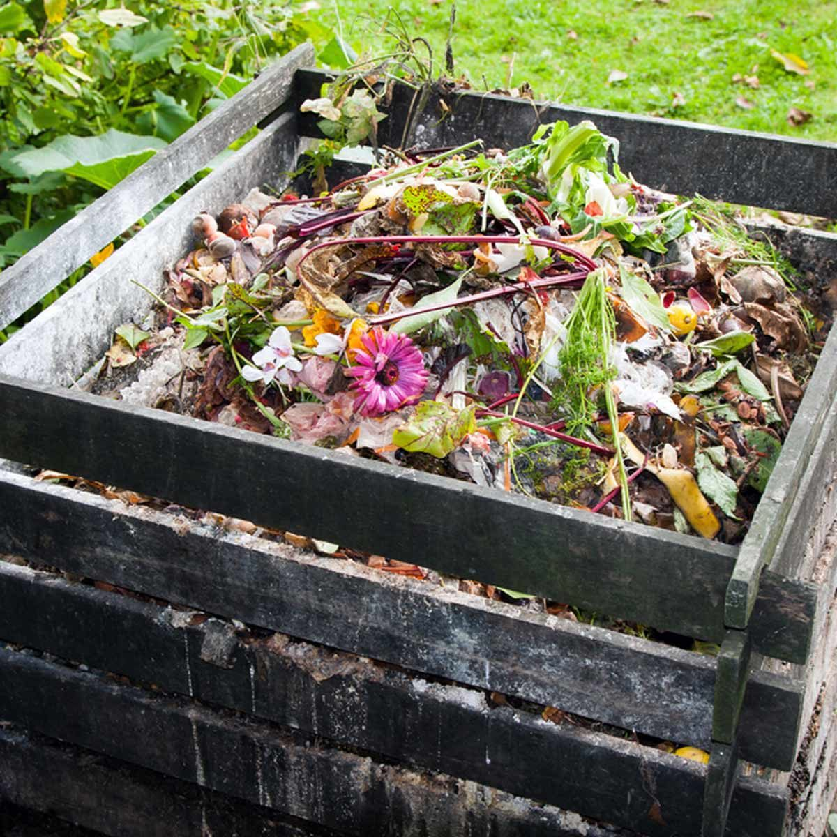 shutterstock_156179246 compost pile