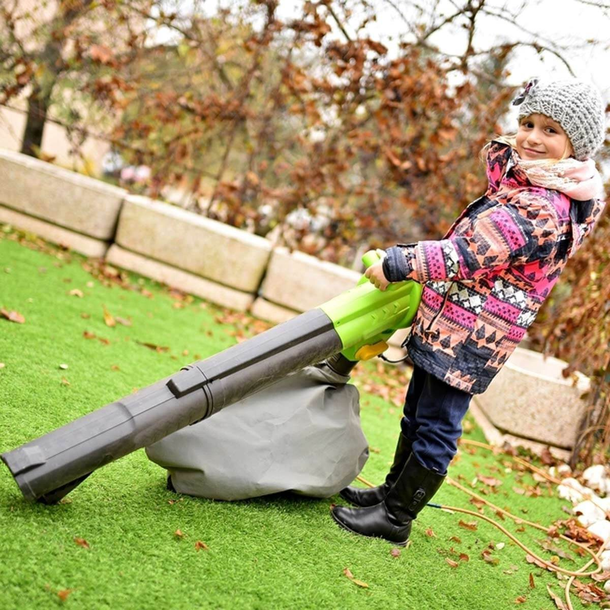 Kid's Leaf Blower