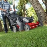 When Should You Start Mowing Your Lawn in the Spring?