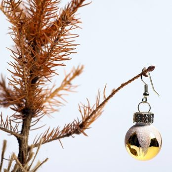 If Your Christmas Tree Is Dying, Here's How to Fix It