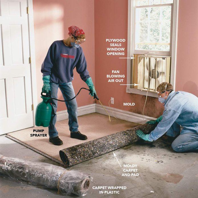 Remove moldy carpet diagram