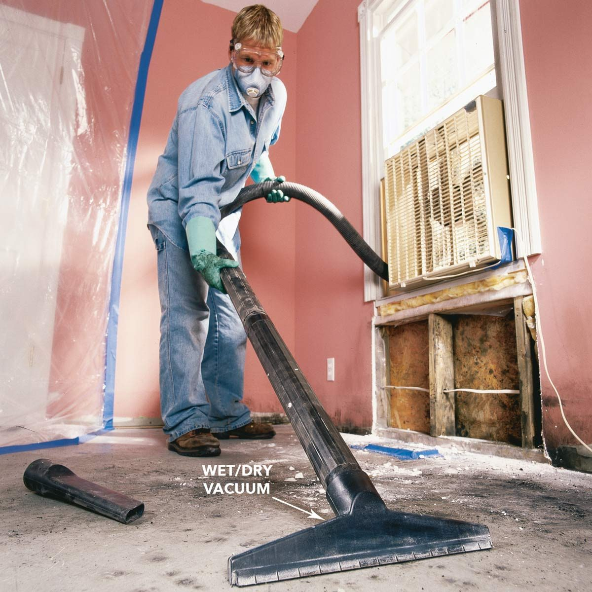 Mold Remediation- Mold Removal Experts
