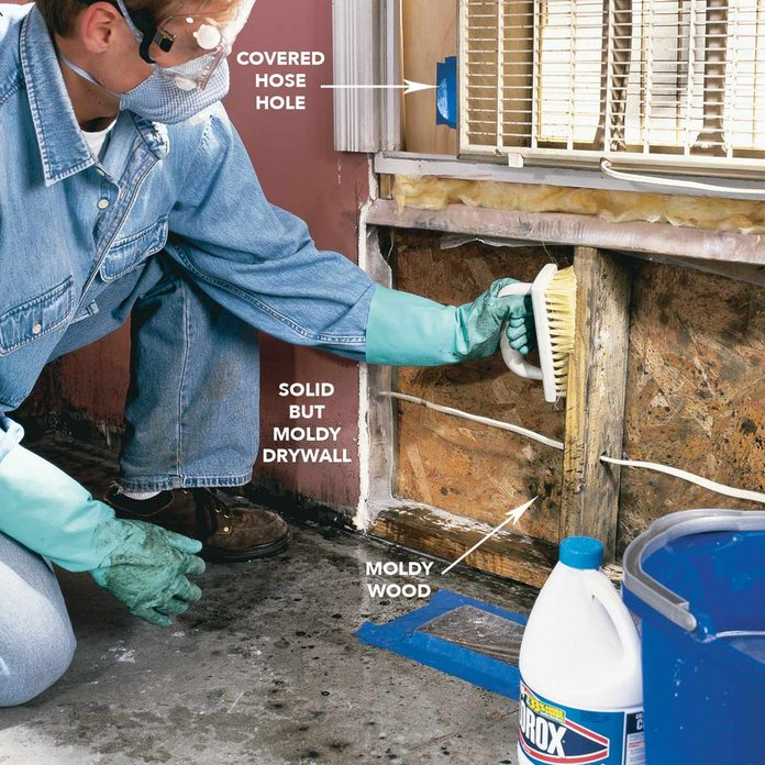 Scrub moldy surfaces with mold cleaner diagram