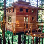 50 Incredible DIY Home Projects