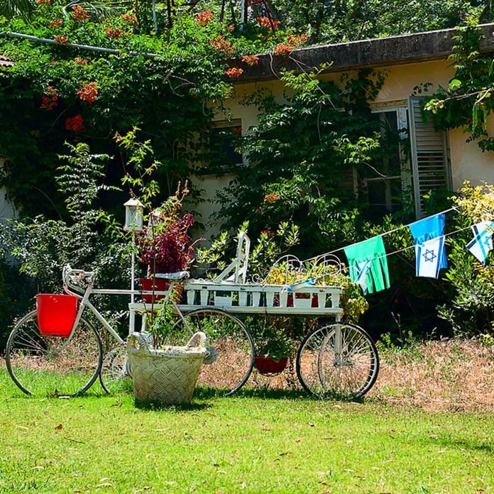 dfh1_shutterstock_654709843 bike mobile cart