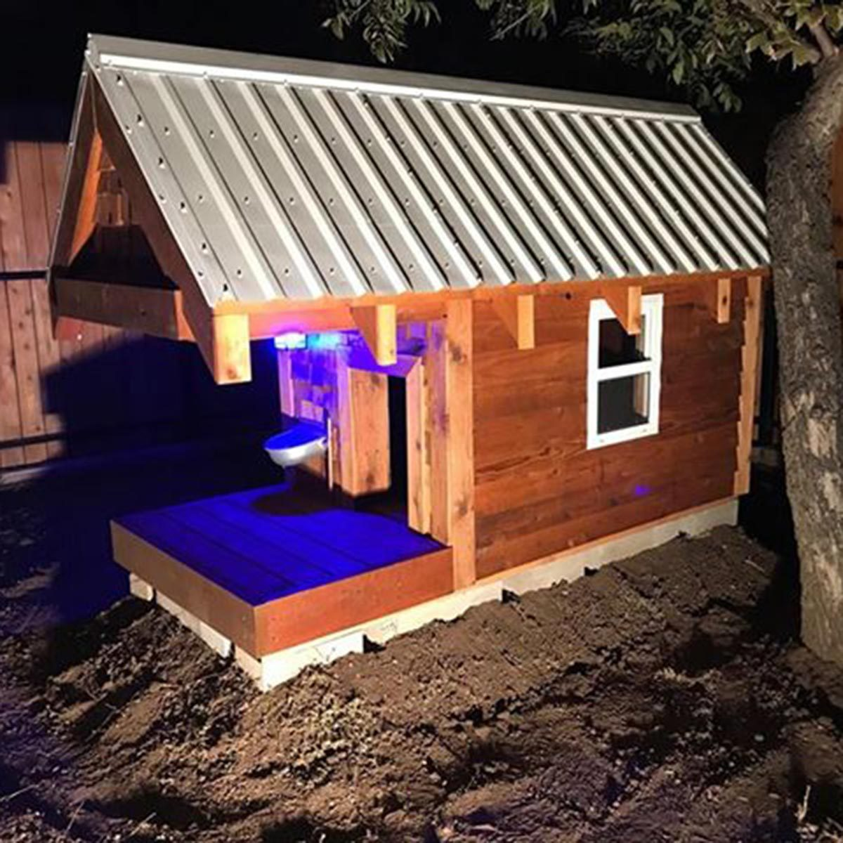 dog house lighting