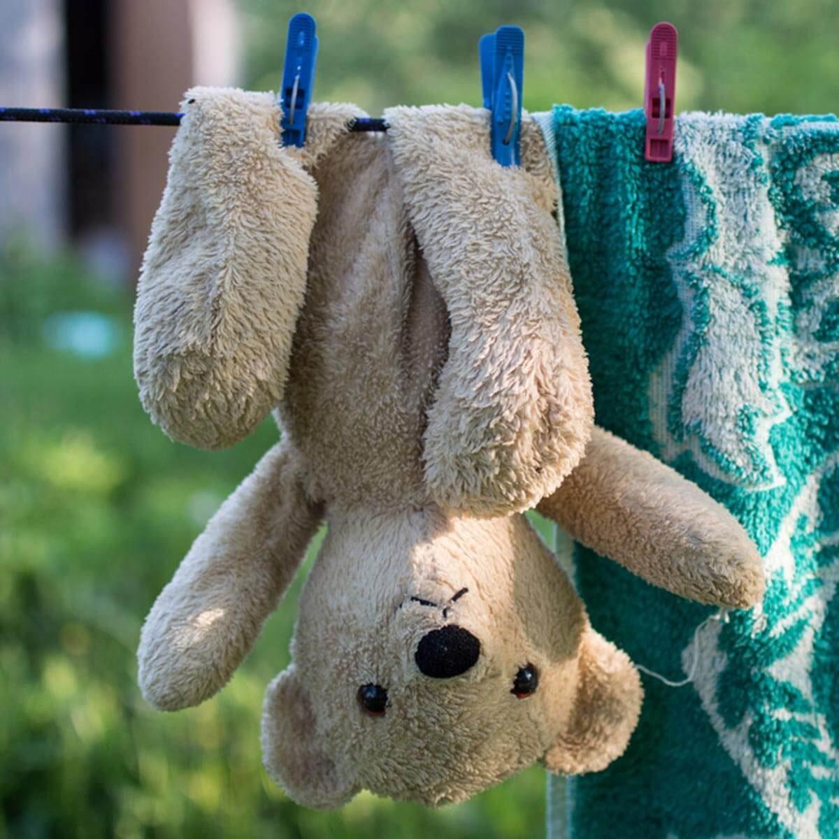 shutterstock_434304847 wash hang dry stuffed animal teddy bear