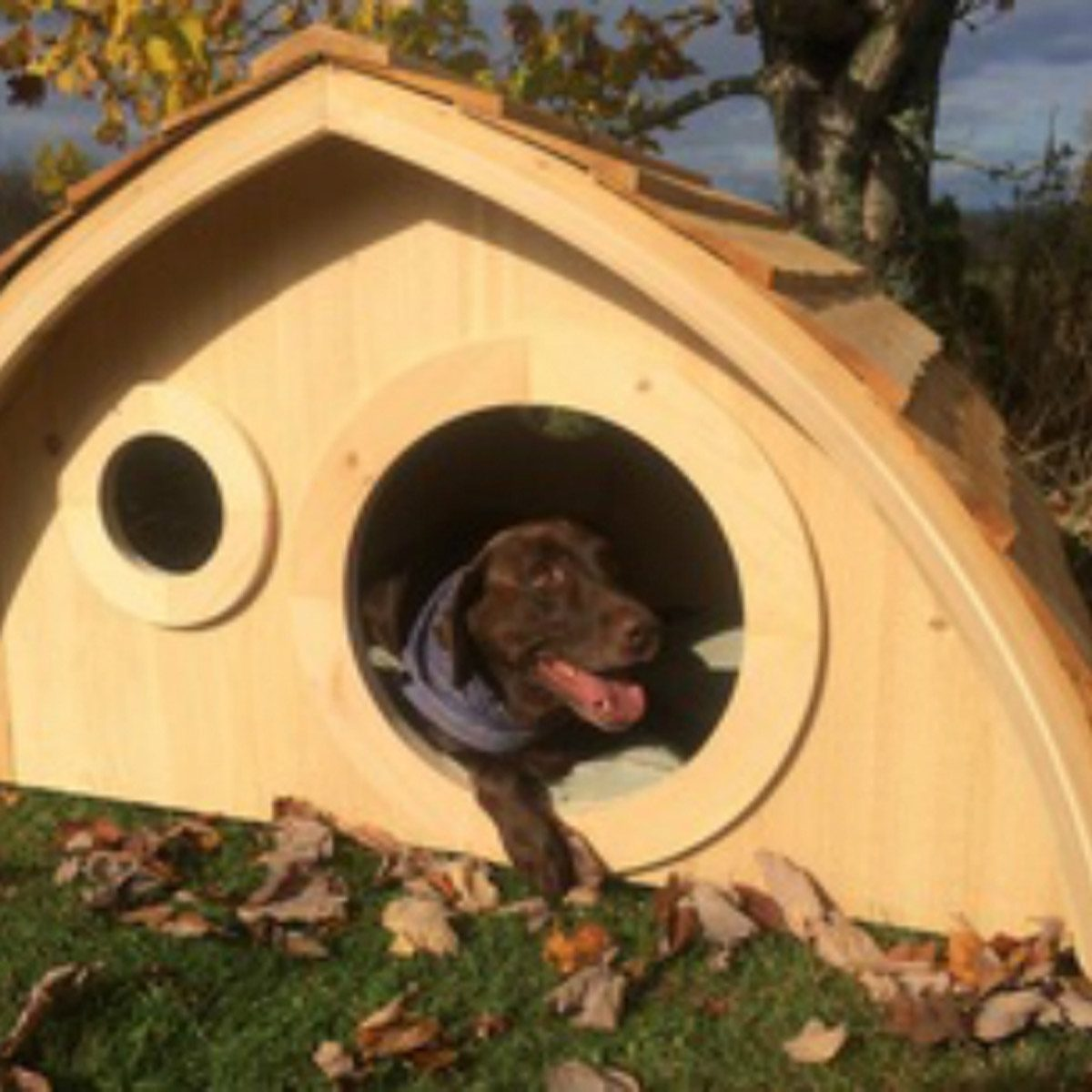 dog house hobbit hole